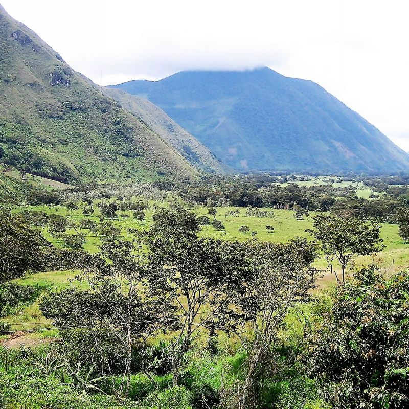 peru, anden, panamericana, lima, ballestas, paracas, Cordillera de los Andes, Abra Apacheta, Huancayo, Chanchamayo, Oxapampa, Pozuzu, Asháninka